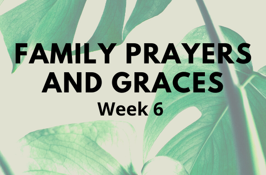 Week 6 prayers and graces