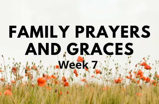 Week 7 of Prayers and Graces