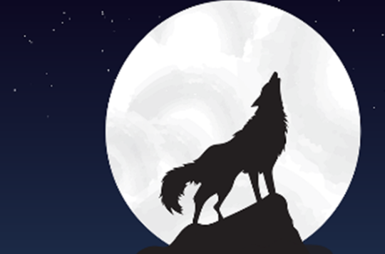 SIlhouette of wolf howling against full moon