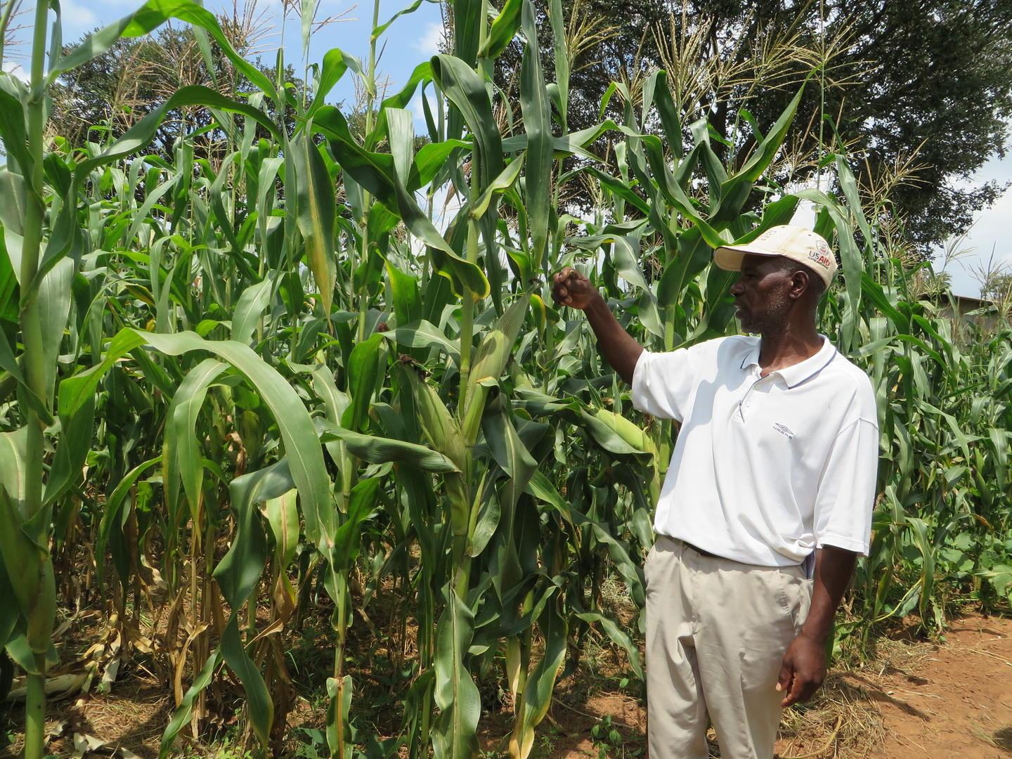 Salvation Army Conservation Farming, Zimbabwe